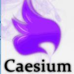 Caesiumを使ってjpg画像を圧縮してブログの表示速度を高速化する